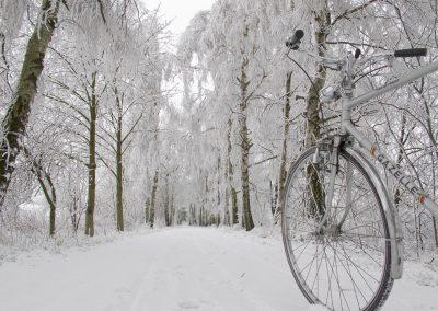 Das Bahnwärterhaus: Der Radweg im Winter